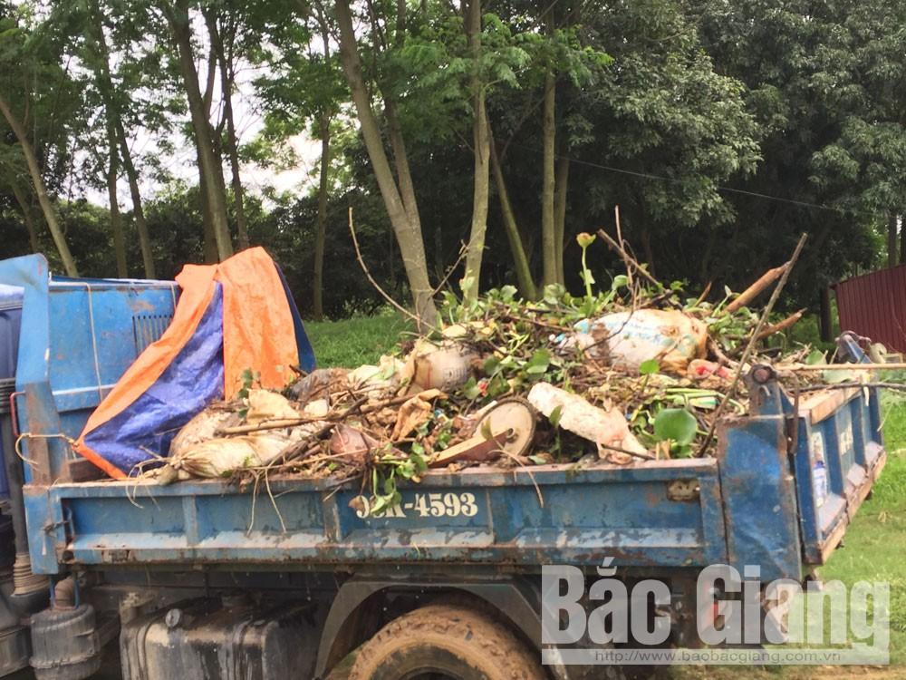 Dịch tả lợn châu Phi; Bắc Giang; nghiêm trị hành vi vứt xác lợn chết ra môi trường, Thế Đại
