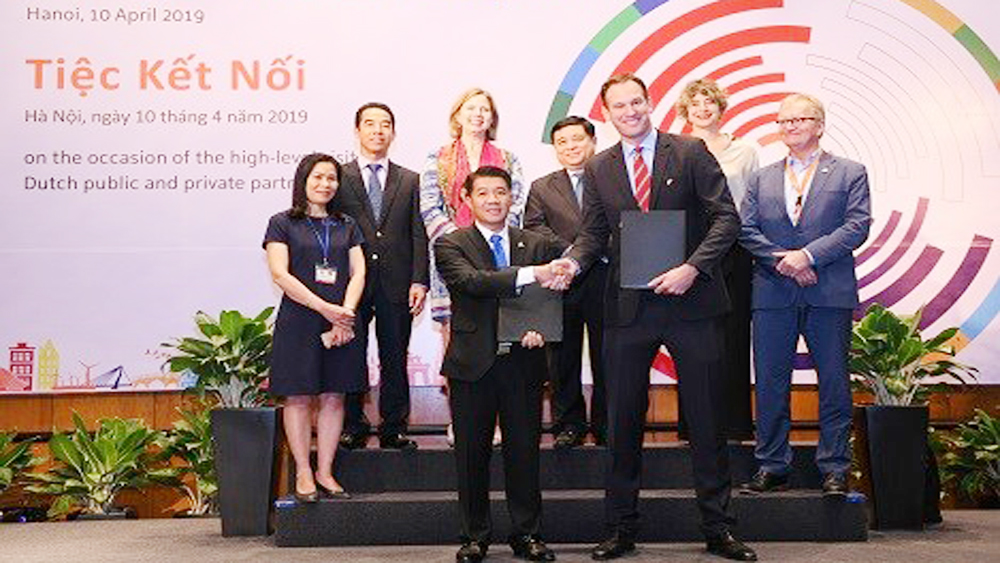 Vietnamese, Dutch firms cooperate in high-quality breeding pig project