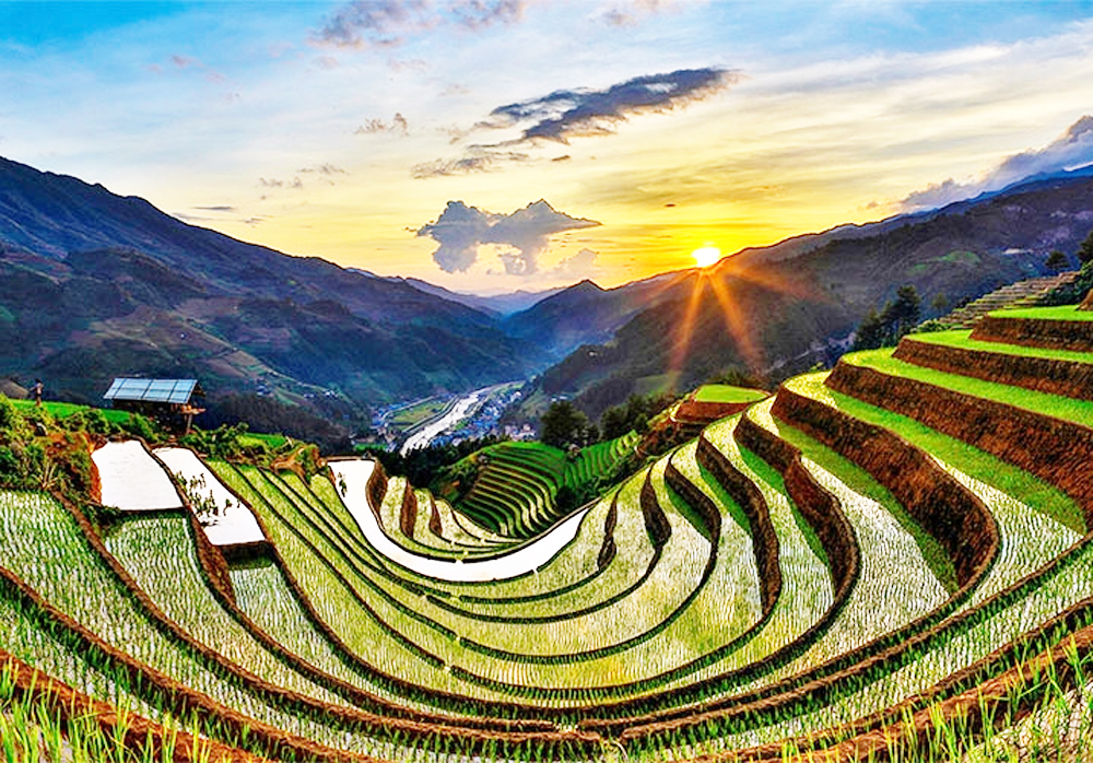 Vietnam, northwest region, pouring-water season, Terraced fields, new rice crop, awe-inspiring vista