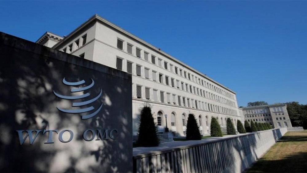 WTO, cảnh báo viễn cảnh u ám, thương mại toàn cầu