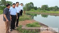 Phó Chủ tịch UBND tỉnh Dương Văn Thái: Kiểm soát chặt khâu tiêu hủy, tháo gỡ kịp thời vướng mắc