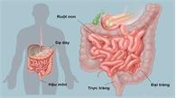 9 nguyên tắc ngừa ung thư dễ áp dụng