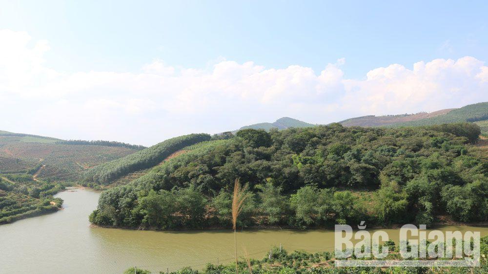 rừng cò Hồ Biềng, xã Nam Dương, huyện Lục Ngạn (Bắc Giang), rừng cò, Hồ Biềng,