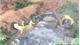 Vụ đổ trộm hóa chất độc hại ở Lục Nam: Cơ quan chức năng đang khẩn trương xử lý và truy tìm thủ phạm