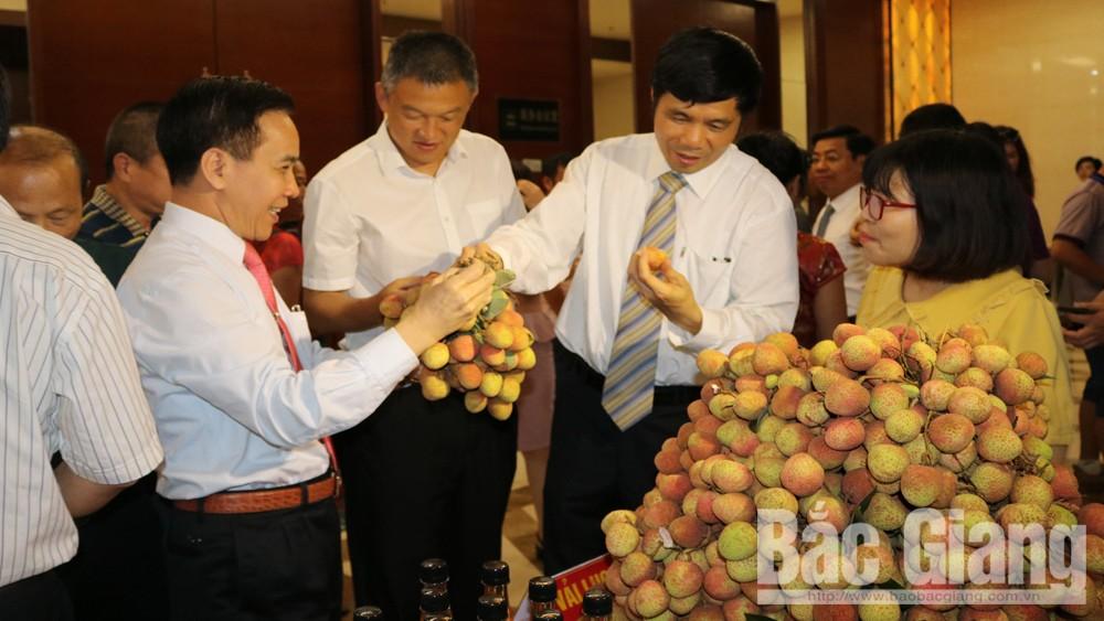 Ông Trần Quang Tấn, Giám đốc Sở Công Thương Bắc Giang giới thiệu với ông Cố Chương Vỹ (đứng thứ hai từ phải sang) về sản phẩm vải thiều Bắc Giang.