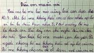 """""""Những cái giật mình"""" sau thư phản đối áp lực điểm 10 của cậu bé lớp 4"""