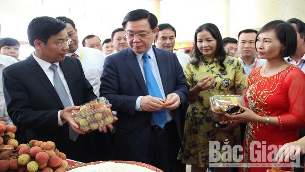 Đưa vải thiều Bắc Giang đến với các thị trường trong và ngoài nước