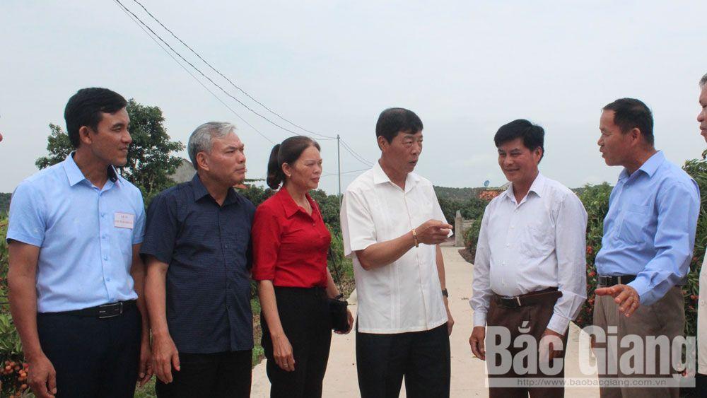 Đồng chí Bùi Văn Hải, Bí thư Tỉnh ủy kiểm tra một số tuyến đường giao thông nông thôn tại thôn Muối, xã Giáp Sơn