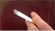 WHO: Mỗi năm thuốc lá giết chết ít nhất 8 triệu người