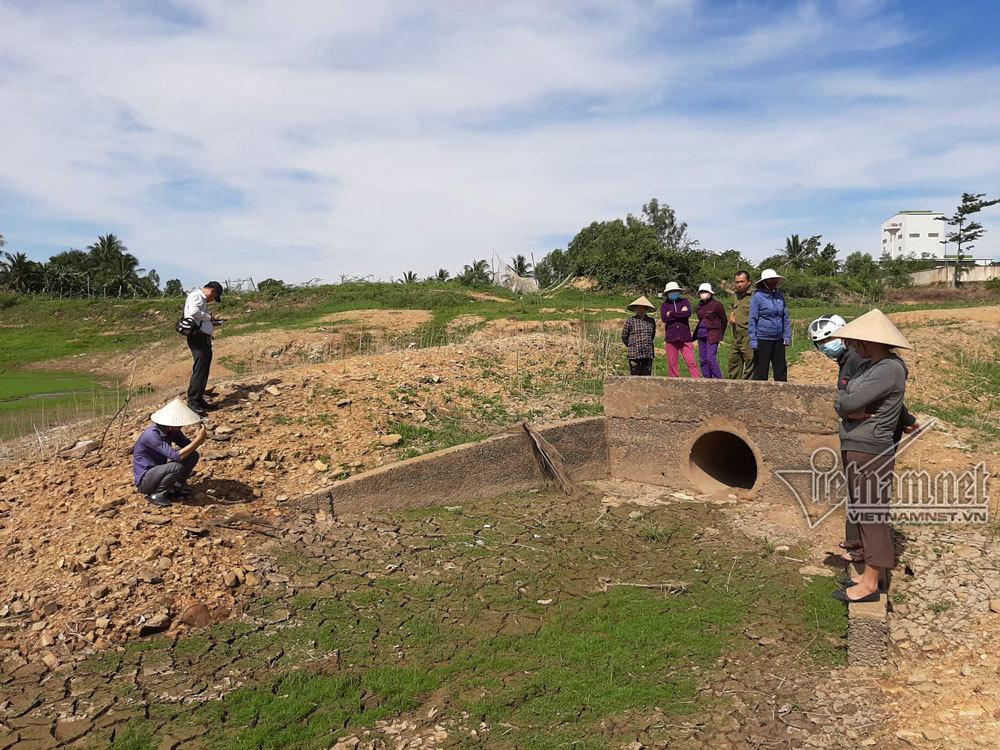 Đồng Nai, Sông La Ngà, AB Mauri, Xả Thải, Ô Nhiễm Môi Trường