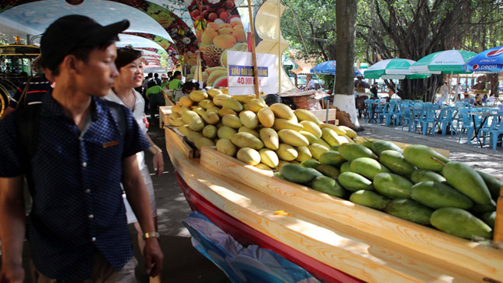 Southern fruit festival begins in HCM City