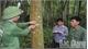 """Chứng chỉ quản lý rừng FSC: """"Chìa khóa"""" mở cửa xuất khẩu gỗ rừng trồng"""