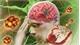 Tai biến mạch máu não nhẹ là gì và cách điều trị thế nào?