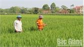 Dân vận khéo ở vùng công giáo tại Việt Yên: Việc khó thành dễ