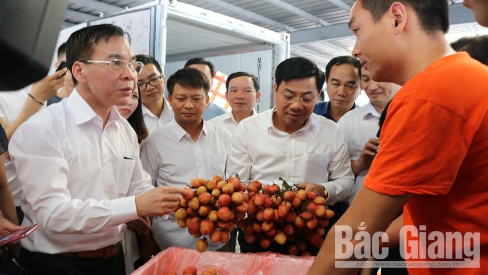 Đồng chí Dương Văn Thái, Phó Chủ tịch UBND tỉnh Bắc Giang và lãnh đạo Sở Công Thương kiểm tra vải thiều Bắc Giang được xuất khẩu sang tiêu thụ tại tỉnh Quảng Tây (Trung Quốc).