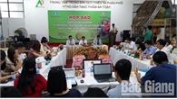 Tuần lễ vải thiều Lục Ngạn diễn ra tại Hà Nội từ ngày 7-6