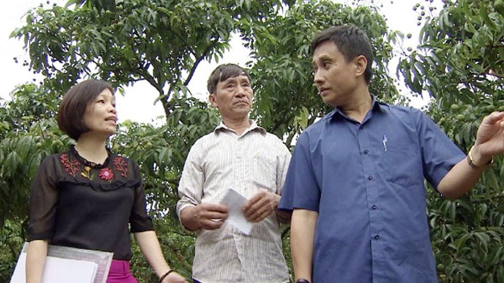 Cán bộ Chi cục Trồng trọt và Bảo vệ thực vật, Sở NN&PTNT tỉnh Bắc Giang hướng dẫn bà con sản xuất theo quy trình tiêu chuẩn GlobalGAP.
