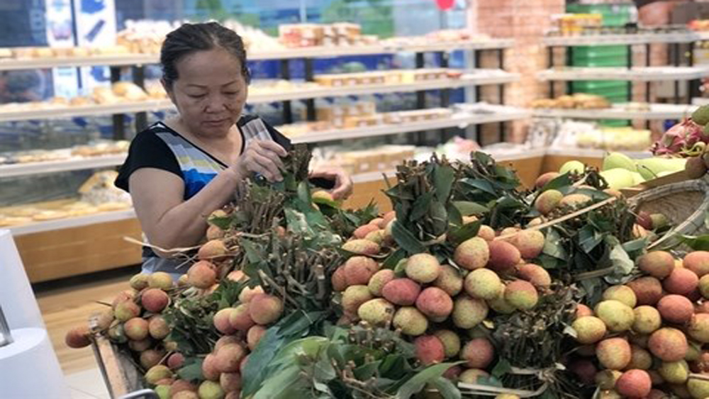 Saigon Co.op takes northern lychees around the country