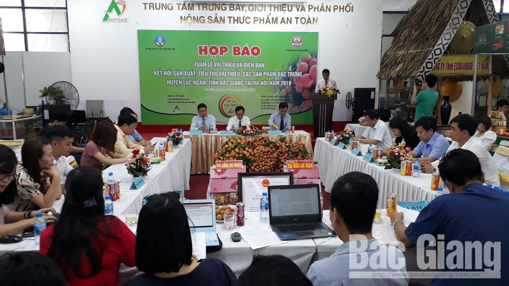 Luc Ngan lychee, Bac Giang province, lychee week, press conference, Production and Consumption, Signature Products, famous products