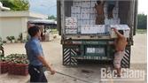 Vải thiều Bắc Giang tiêu thụ mạnh tại chợ đầu mối các tỉnh phía Nam