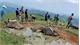 Nằm trong vũng nước, 9 con trâu bị sét đánh chết