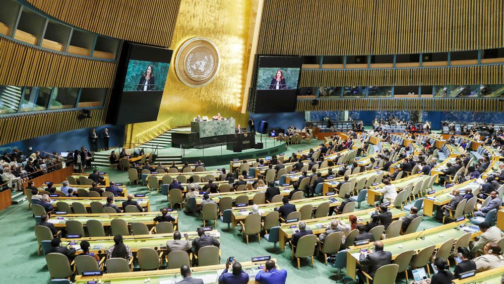 Việt Nam, lần thứ hai trúng cử, Ủy viên không thường trực, Hội đồng Bảo an Liên hợp quốc