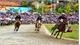 Bac Ha horse race attracts huge number of spectators