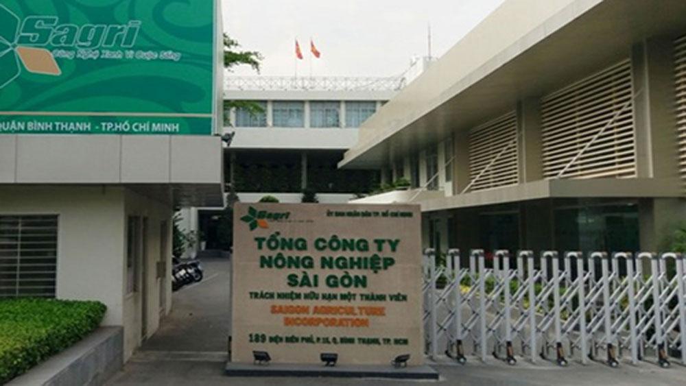 Ông Lê Tấn Hùng, bị đình chỉ chức, Tổng giám đốc Sagri