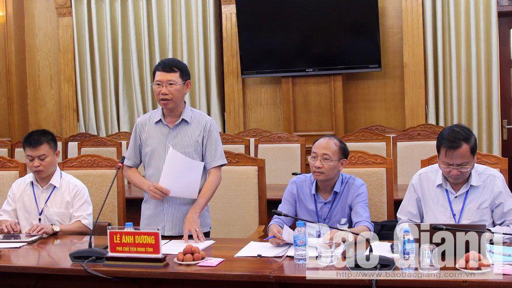 Phó Chủ tịch UBND tỉnh Lê Ánh Dương phát biểu tại buổi làm việc.