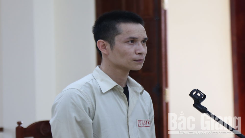Lạm dụng tín nhiệm chiếm đoạt tài sản; 12 năm tù, TAND tỉnh Bắc Giang