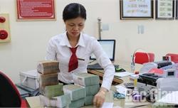 Bắc Giang: Bố trí 896 tỷ đồng cho vay tiêu thụ và chế biến vải thiều