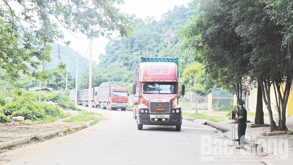 Xuất khẩu vải thiều qua các cửa khẩu tỉnh Lạng Sơn: Giảm thủ tục, thông quan trong ngày