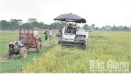 Phấn đấu không nợ tiêu chí trong xây dựng nông thôn mới