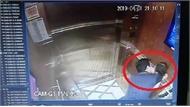 """Ngày 25-6, xét xử kín bị cáo Nguyễn Hữu Linh về tội """"dâm ô đối với người dưới 16 tuổi"""""""