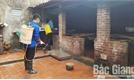 Thành phố Bắc Giang phát động chiến dịch phòng, chống bệnh dịch tả lợn châu Phi
