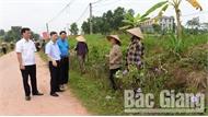 Bắc Giang thực hiện đợt cao điểm phòng, chống bệnh dịch tả lợn châu Phi