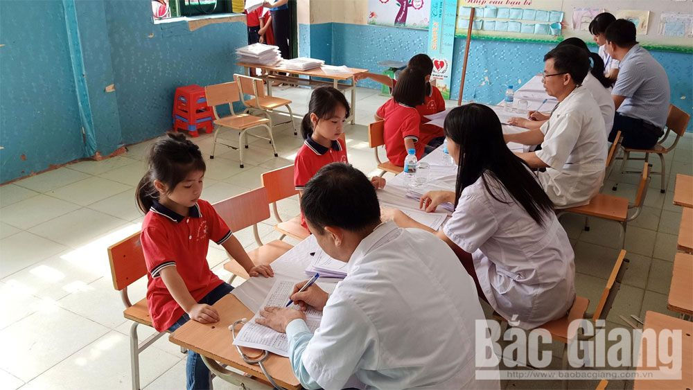 Bac Giang province, electronic health records, urgency and accuracy, primary health care, medical facilities, health examination software, identification number