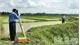 Quản lý đất công ích: Chậm khắc phục bất cập