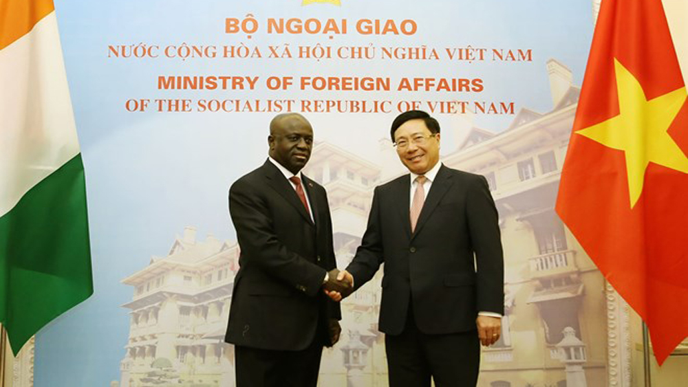 Vietnam values ties with Ivory Coast
