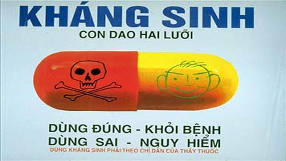 WHO, kêu gọi, hành động chống vi khuẩn kháng thuốc, vi khuẩn kháng thuốc, sử dụng kháng sinh