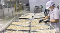 Thu mua hơn 1 nghìn tấn vải thiều để chế biến xuất khẩu và tiêu thụ trong các siêu thị