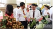 Bac Giang develops lychee economy
