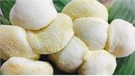 Vụ 76 người ngộ độc thực phẩm sau ăn cỗ ở Tân Yên: Thủ phạm là khuẩn tụ cầu vàng ở bánh dày