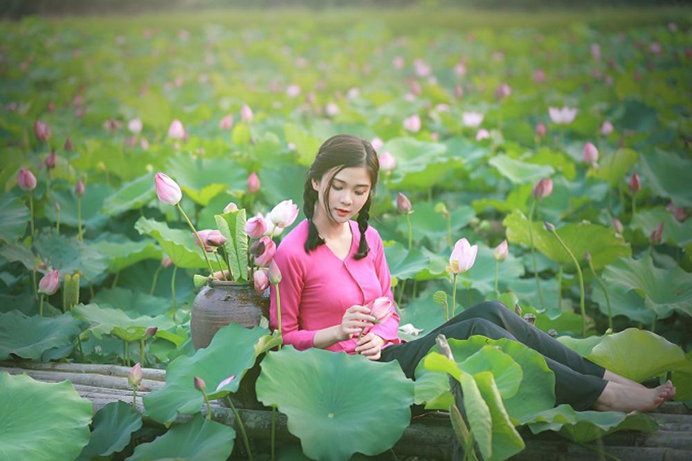 Lotus season, selfie bees, Vietnam's national flower, endless inspiration, honeypot, selfie and Instagram bees