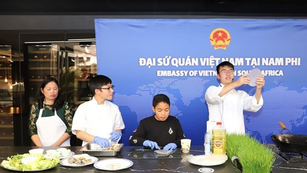 Vietnam, active contributions, ASEAN Festival Day, South Africa, local government, diplomatic corps, cultural exchanges, economic and investment cooperation