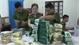 Clip: Nhóm người buôn nửa tạ ma túy từ Lào về Việt Nam bị bắt giữ