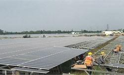 Ồ ạt đầu tư điện mặt trời khiến lưới điện quá tải