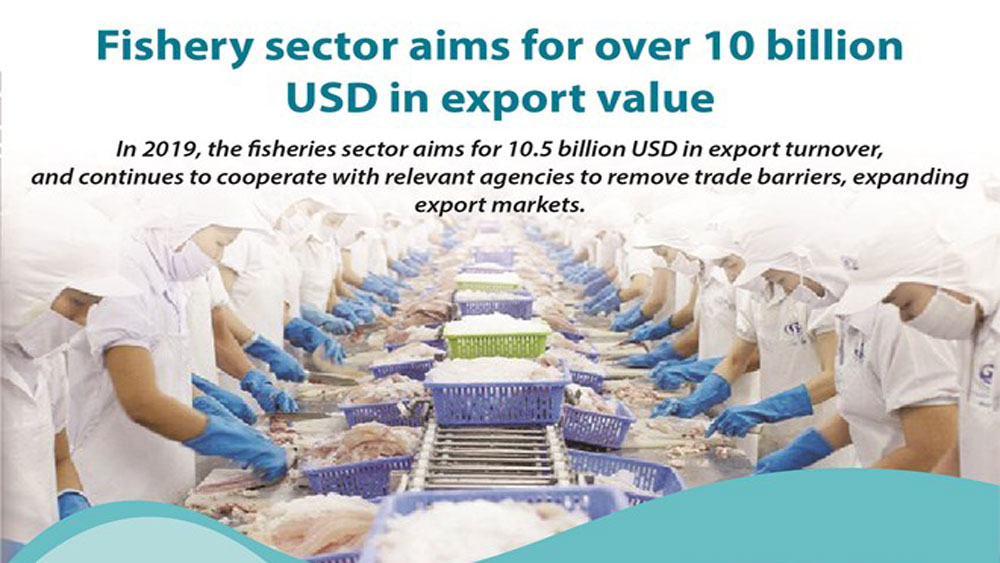 Fishery sector aims for over 10 billion USD in export value