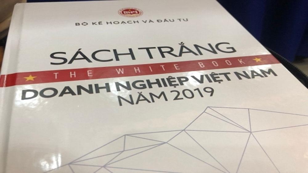 Lần đầu công bố, Sách trắng Doanh nghiệp Việt Nam, thực trạng doanh nghiệp Việt Nam