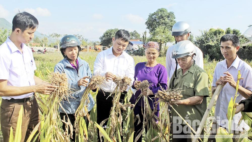 Bắc Giang,  Đại hội đại biểu MTTQ tỉnh Bắc Giang, oàn viên, hội viên, quần chúng nhân dân, đại hội, Đoàn kết - Dân chủ - Đổi mới - Phát triển